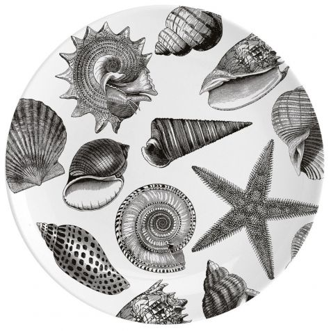 SEASHORE Fine China Wall Art Plate by Chase & Wonder