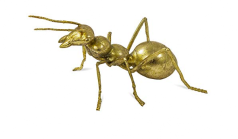 The Decorative GOLD ANT
